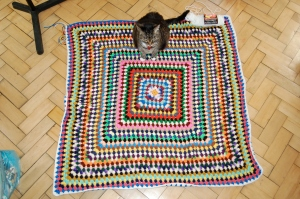 Granny Square blanket with Jiji for size perspective (and I couldn't get her off of it while standing on top of the couch to take the picture!)
