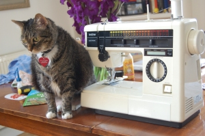 """Our """"New-To-Us"""" Sewing Machine with Jiji for perspective."""